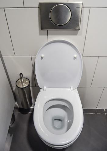 '개인 전용 변기'만 고집하는 박근혜가 공용 화장실만 있는 ...