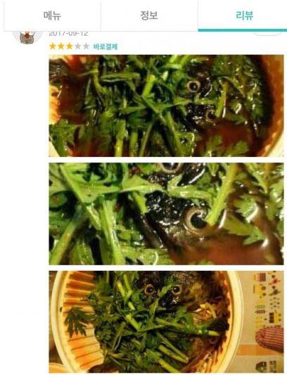 매운탕 부엉이 올빼미 1