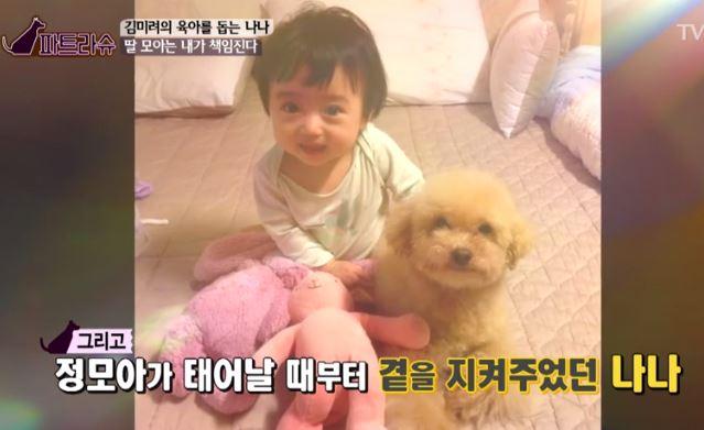 김미려 모아 강아지 2