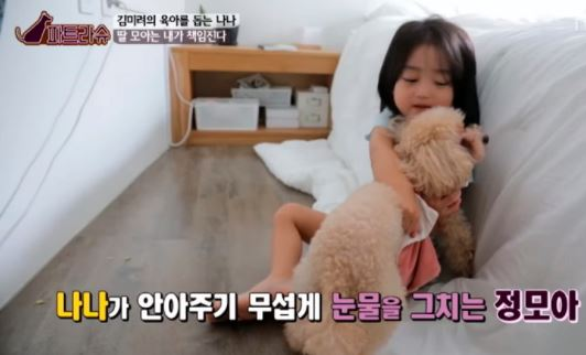 김미려 모아 강아지 3